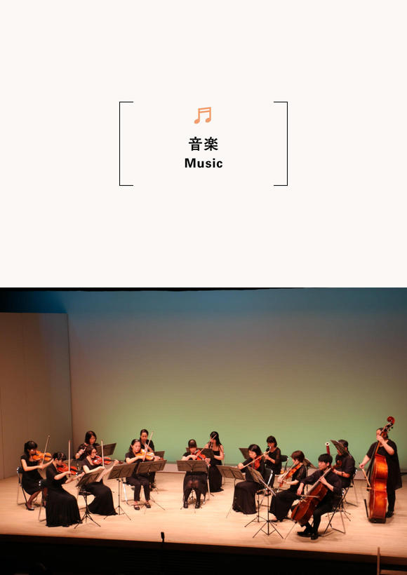 Toyooka Chamber Orchestra Concert